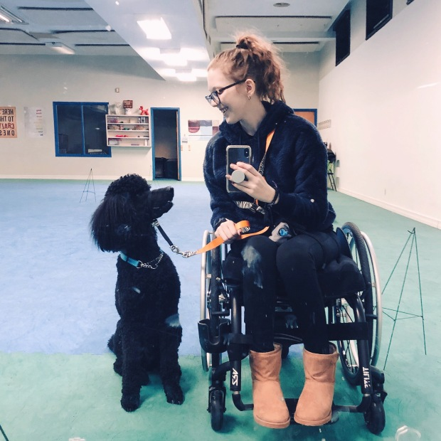 A photo of Kathleen siting in a small black wheelchair at the dog gym. She is leaning to the left towards her black poodle who is seated beside her. The dog is look up at Kathleen and she is looking down at him, smiling. She is holding her phone up at chest height using it to take a mirror selfie. Kathleen is being glasses and has wavy dirty blonde hair pulled back into a ponytail. She is wearing a navy hoodie, black leggings, and tan ugg style boots. In the background, you can see the floor covered in blue mats with green mats around the periphery. The wall behind them is white and has a open door and window as well as a bookshelf.
